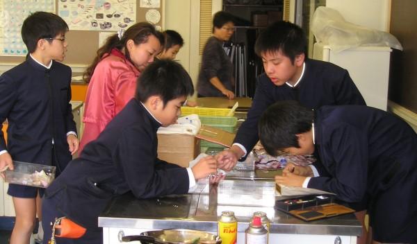 数別に仕分けするベルマーク奉仕委員たち=高知市の高知小学校 ベルマーク活動は児童のベルマーク奉仕